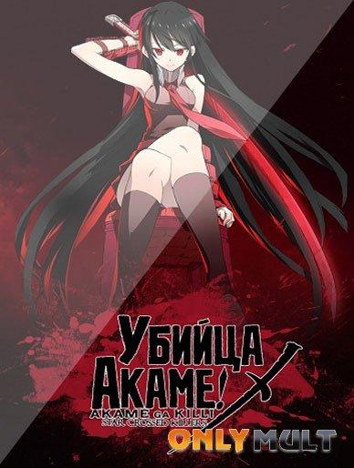 Poster Убийца Акаме