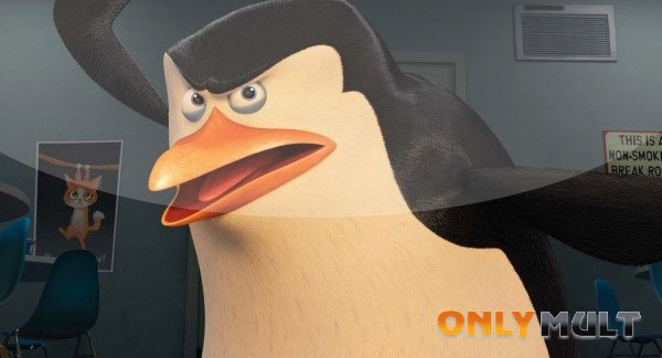 Третий скриншот Пингвины Мадагаскара (2014)