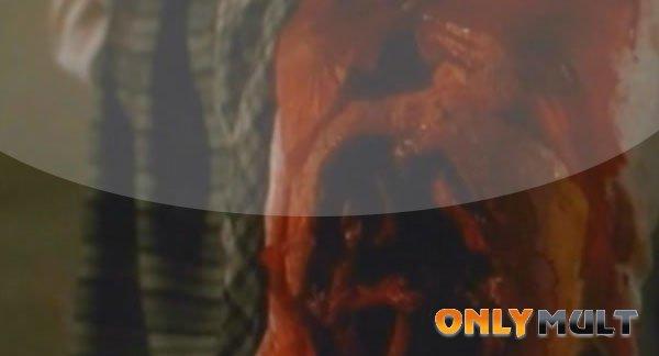 Третий скриншот Чёрная кошка