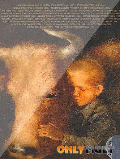 Poster Корова
