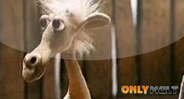 Второй скриншот Летели два верблюда