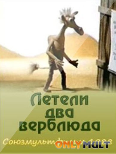 Poster Летели два верблюда