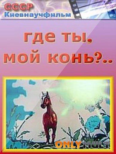 Poster Где ты мой конь