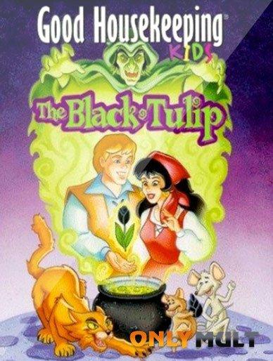 Poster Черный Тюльпан
