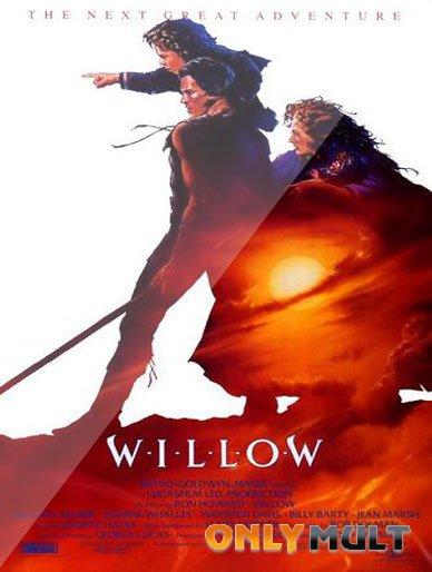 Poster Виллоу