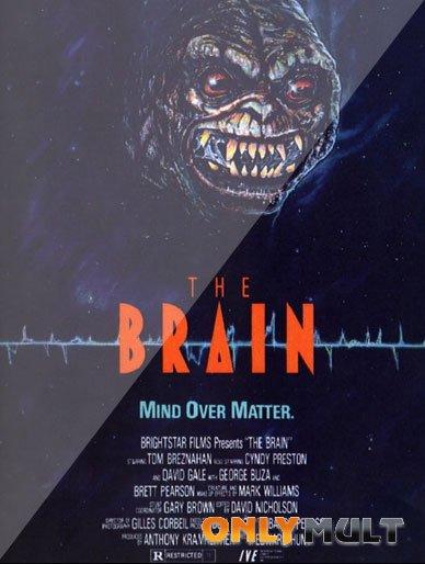 Poster Мозг