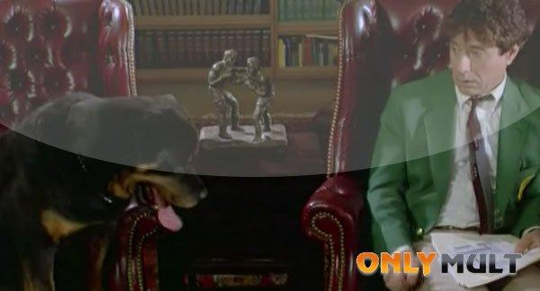 Третий скриншот Волчонок 2