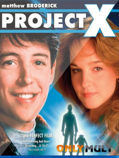 Poster Проект Икс