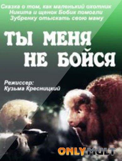 Poster Ты меня не бойся