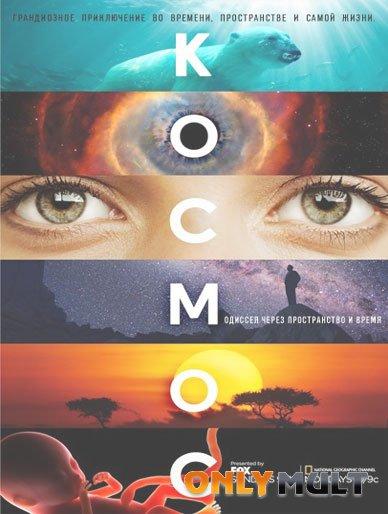 Poster Космос Пространство и время