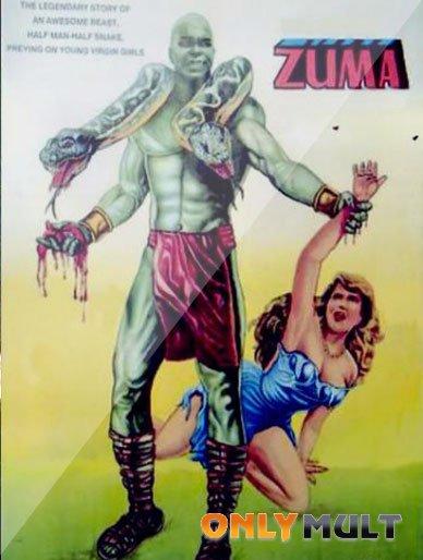 Poster Зума
