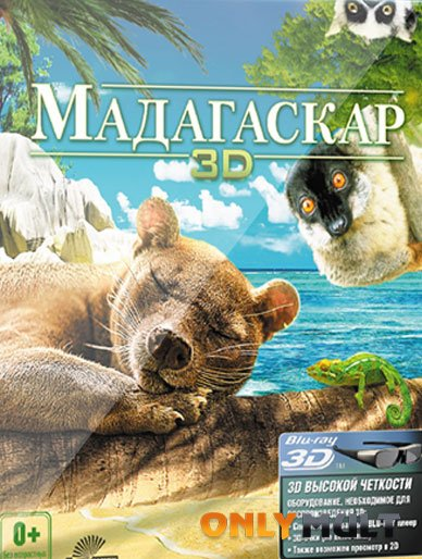 Poster Мадагаскар 3D [2014]