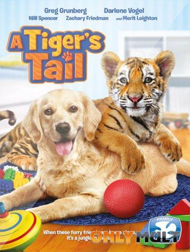 Poster Тигриный хвост