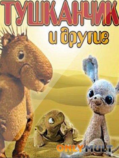 Poster Ракушка