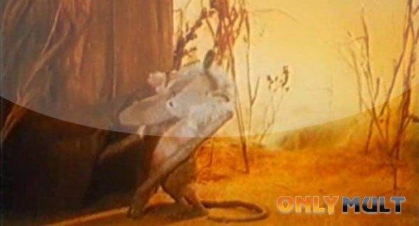 Третий скриншот Мышонок и кошка