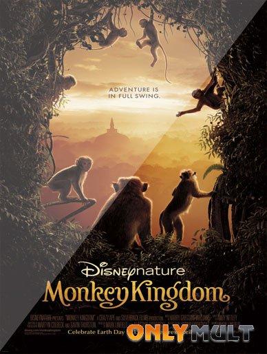Poster Королевство обезьян (2015)