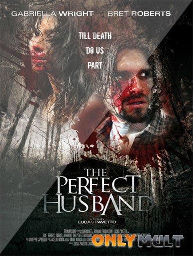 Poster Идеальный муж (2014)