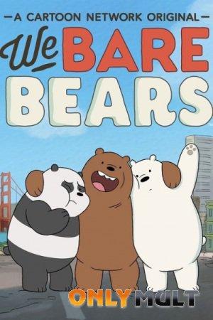 Poster Мы обычные медведи