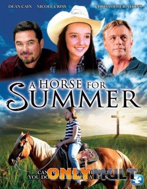 Poster Лошадь на лето