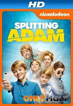 Poster Расщепление Адама
