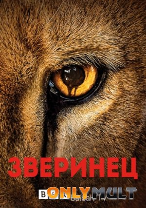 Постер торрента Зверинец