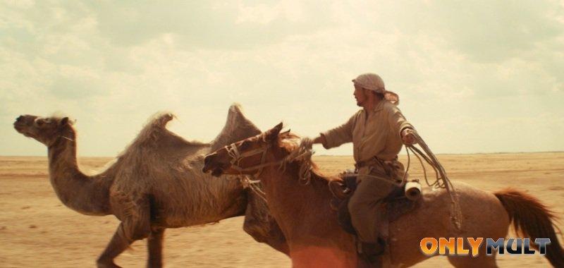 Второй скриншот Небесный верблюд