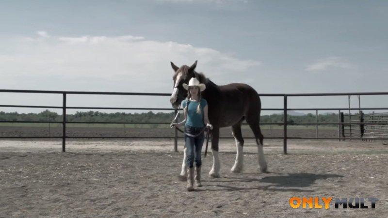 Второй скриншот История одной лошадки