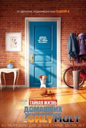 Poster Тайная жизнь домашних животных