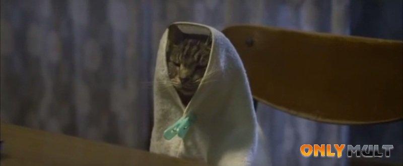 Первый скриншот Если кошки исчезнут во всём мире