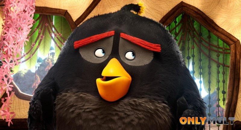 Второй скриншот Angry Birds в кино