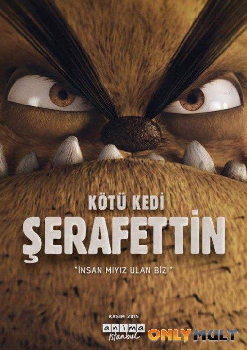Poster Плохой кот Шерафеттин