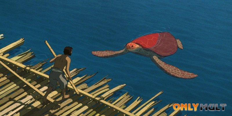 Первый скриншот Красная черепаха